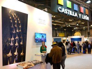 Caastilla y León