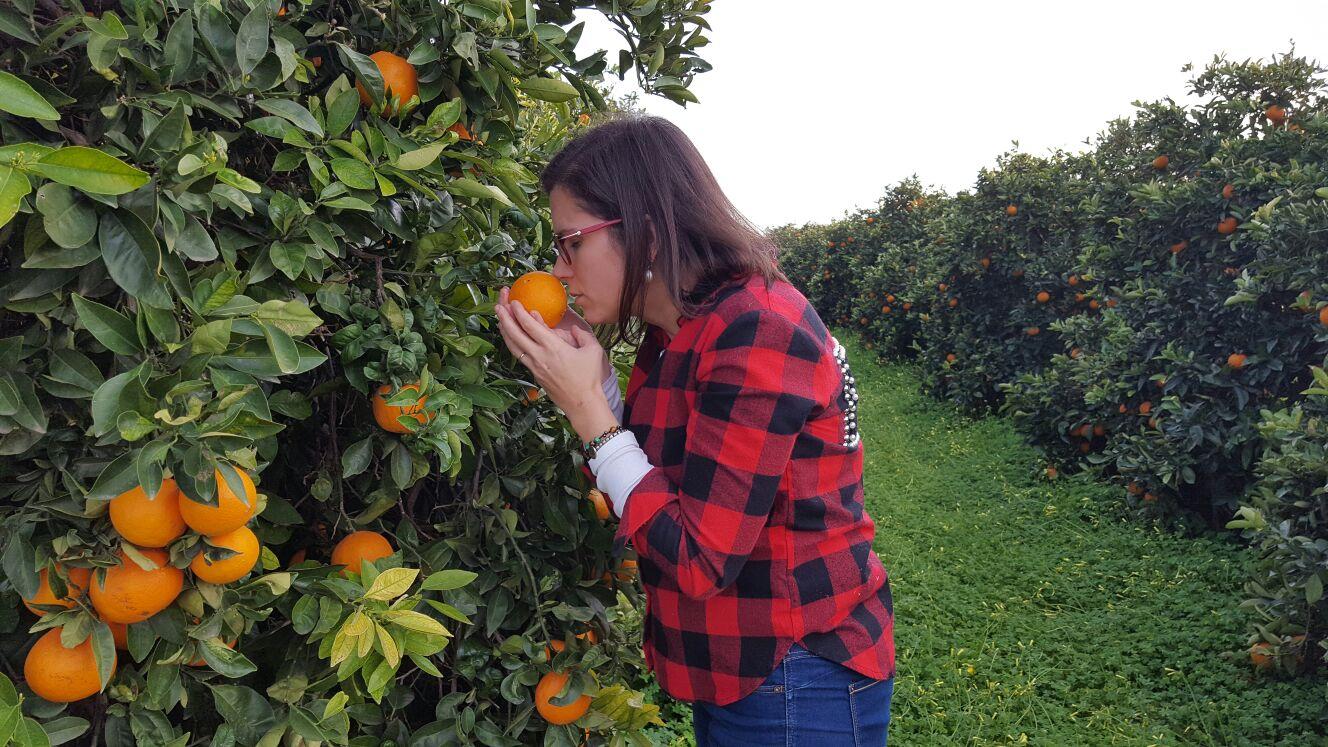 Naranjas Foios