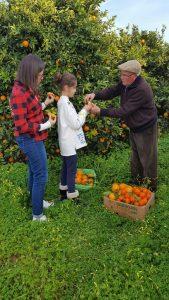 Testando el punto optimo de las naranjas